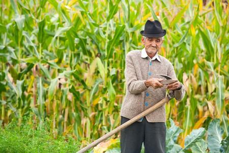 Senior agricultor con guadaña para Jugaré el césped tradicionalmente  Foto de archivo - 7730996