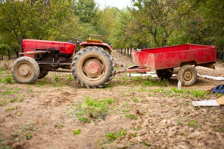 Old beaten tractor and trailer in an orchard photo