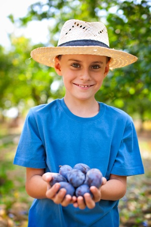 Little farmer with straw hat and a handful of plums Stock Photo - 8336233