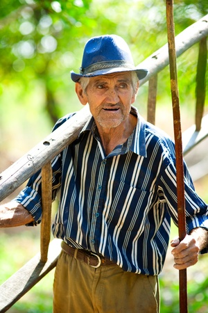 Old man carrying a ladder and a stick to work in an orchard