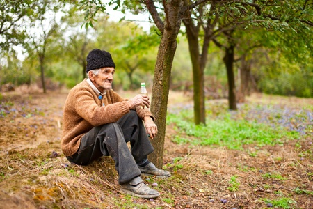 peasant farming: Old farmer drinking plum brandy in a plum trees orchard, having a break from work Stock Photo