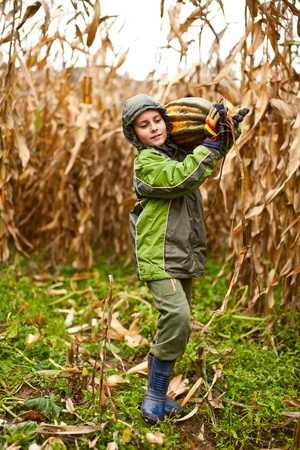 Cute kid outdoor carrying a big pumpking, at the harvest photo