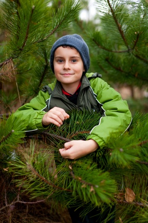 Portrait of a beautiful child outdoor, among pine branches photo