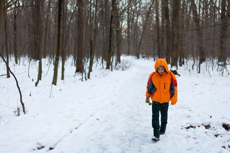 Little boy walking in the forest in a winter day photo