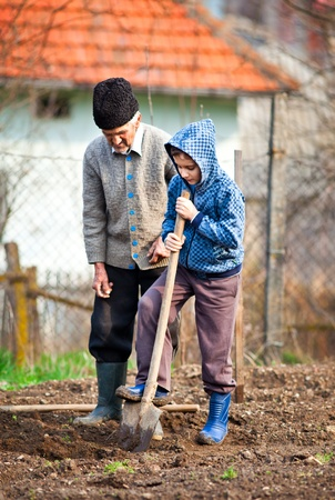 Senior farmer teaching his grandson how to plant trees in the garden photo