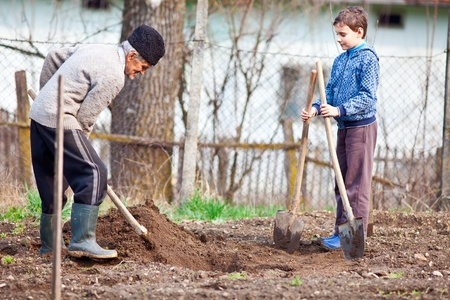 dug: Senior farmer teaching his grandson how to plant trees in the garden