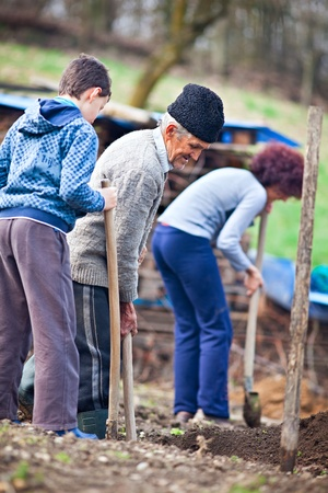 Three generations family working the land, digging for planting trees photo