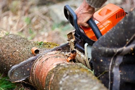 Close-up van arbeider handen met kettingzaag, snijden een boomstam  Stockfoto