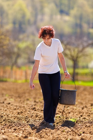 sow: Young woman farmer planting seeds mixed with fertilizer from a bucket