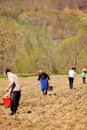 Family of farmers sowing seeds mixed with fertilizer on their land Stock Photo - 9502380