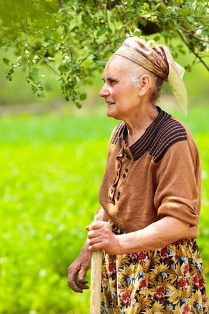 Profile portrait of an old rural woman with kerchief outdoor photo