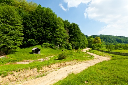 Landscape with empty road through forest under blue sky Stock Photo - 9849749