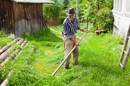 scythe: Farmer senior con guada�a para cortar el c�sped tradicionalmente Foto de archivo