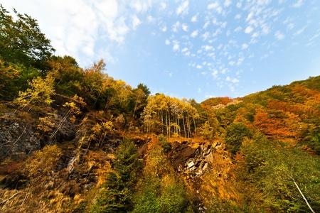 Beautiful mountain landscape in Parang, Romania Stock Photo - 10734072