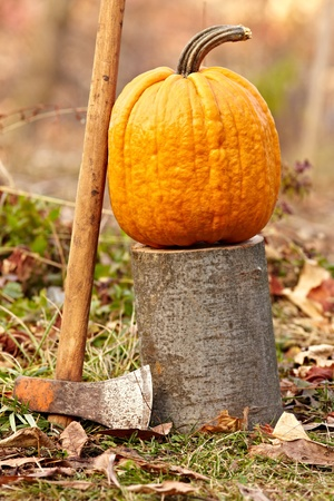 large pumpkin: A large pumpkin on a log outdoor in the grass