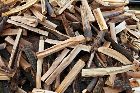 A pile of freshly cut logs outdoor Stock Photo - 11272094