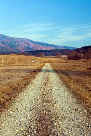 Landscape with dirt road in rural area Stock Photo - 11730073