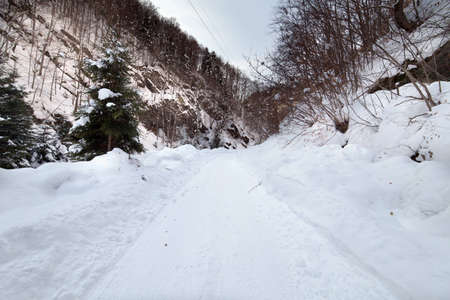 Landscape with a road covered with snow in a canyon Stock Photo - 12575103