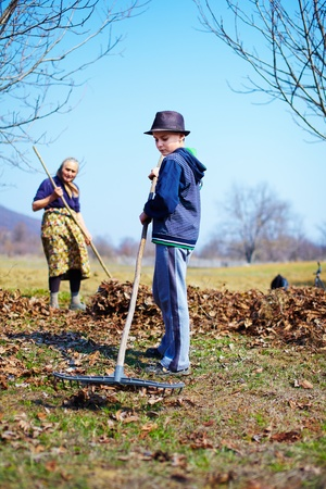 Grandmother and grandson spring cleaning the walnut orchard with rakes Stock Photo - 13029740