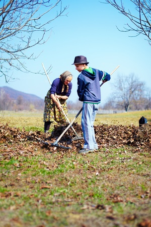 Grandmother and grandson spring cleaning the walnut orchard with rakes photo