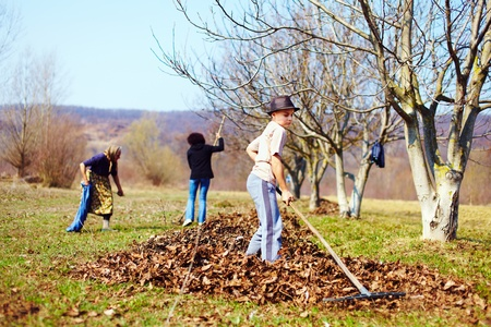 Kid with his grandmother and his mother spring cleaning with a rake in an orchard Stock Photo - 13029817