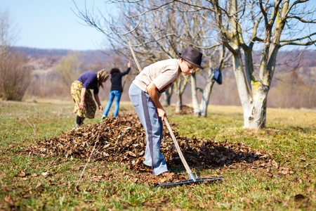 Kid with his grandmother and his mother spring cleaning with a rake in an orchard photo
