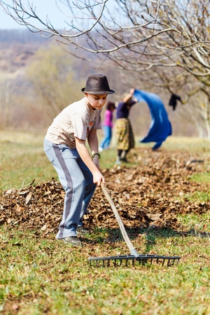 Grandmother and grandson spring cleaning the walnut orchard with rakes Stock Photo - 13029730