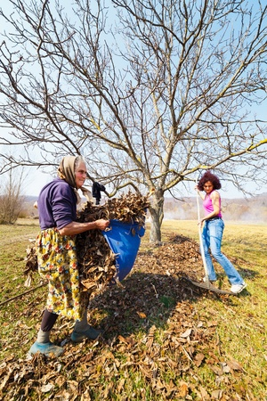Senior rural woman and her daughter with rakes, spring cleaning in a walnut orchard Stock Photo - 13029852