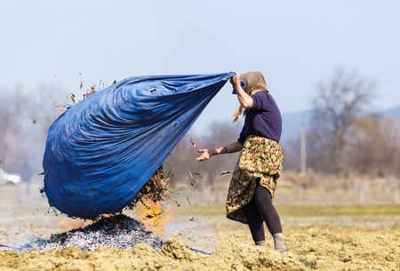 Old rural woman burning fallen leaves, spring cleaning in the garden photo