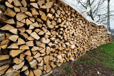 Stacked chopped wood for the winter or construction Stock Photo - 13220559