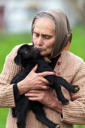 Closeup portrait of a senior woman holding a baby goat outdoor photo
