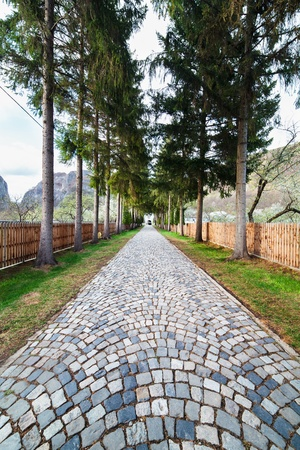 Mountain landscape with stone paved alley, in a spring day photo