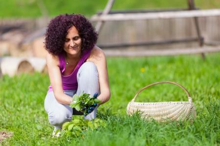 Jeune femme avec des gants de protection ramasser des orties dans un panier