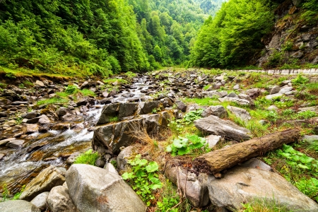 Landscape with river flowing through rocks Stock Photo - 13815114