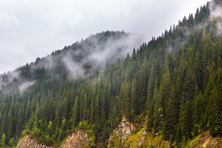 Landscape with Parang mountains in Romania in a foggy rainy day Stock Photo - 13820585