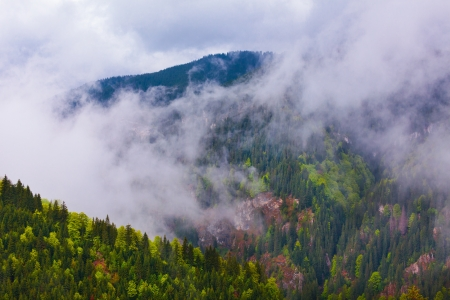 Landscape with Parang mountains in Romania in a foggy rainy day photo