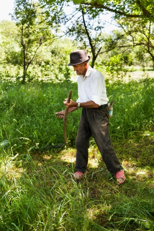 Old farmer mowing the lawn near the forest with a vintage scythe photo
