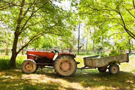 Old tractor with trailer near the trees photo