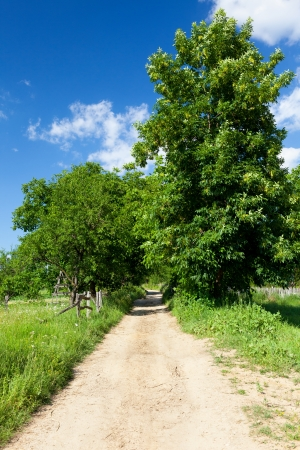 Landscape with a dirt road in the countryside Stock Photo - 15662839