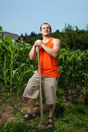 joven agricultor: Sudoraci�n de trabajo joven agricultor con una azada cerca de un campo de ma�z Foto de archivo