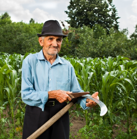 Senior farmer sharpening his scythe with a corn field and a forest in the background photo