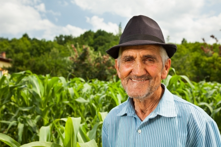 Portrait of a senior farmer with a corn field in the background, selective focus Stock Photo