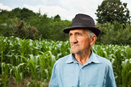 Portrait of a senior farmer with a corn field in the background, selective focus photo