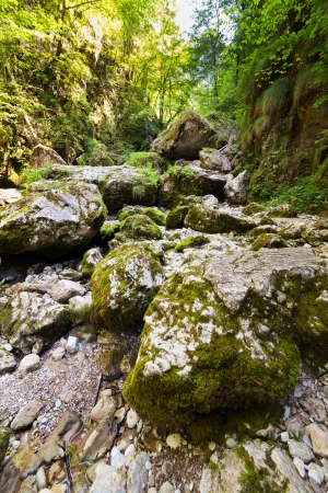 Canyon valley with mossy boulders in mountains Stock Photo - 15662907