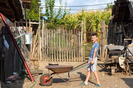 yard work: Cute boy pushing a barrow at countryside, doing yard work