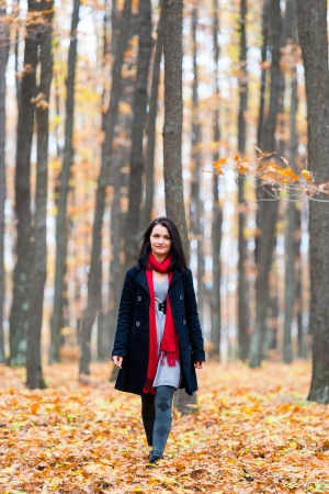 Beautiful young caucasian woman in an autumnal landscape Stock Photo - 16519522
