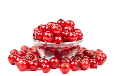 Macro of red currant berries on white background photo