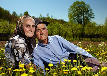 Portrait of an old couple sitting in a dandelion field photo