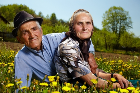 Senior couple resting in a dandelion field in the countryside photo