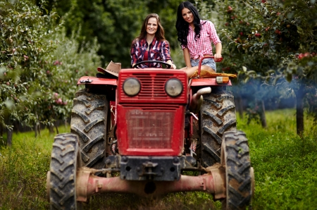Two attractive female farmers driving the tractor in the orchard Foto de archivo